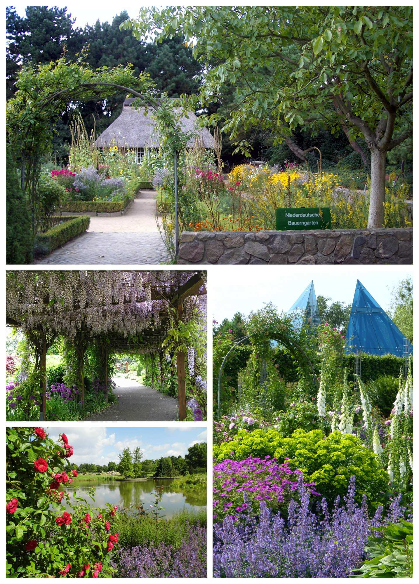 Ein Kleinod In Hamburgs Westen Ist Definitiv Der Loki Schmidt Garten