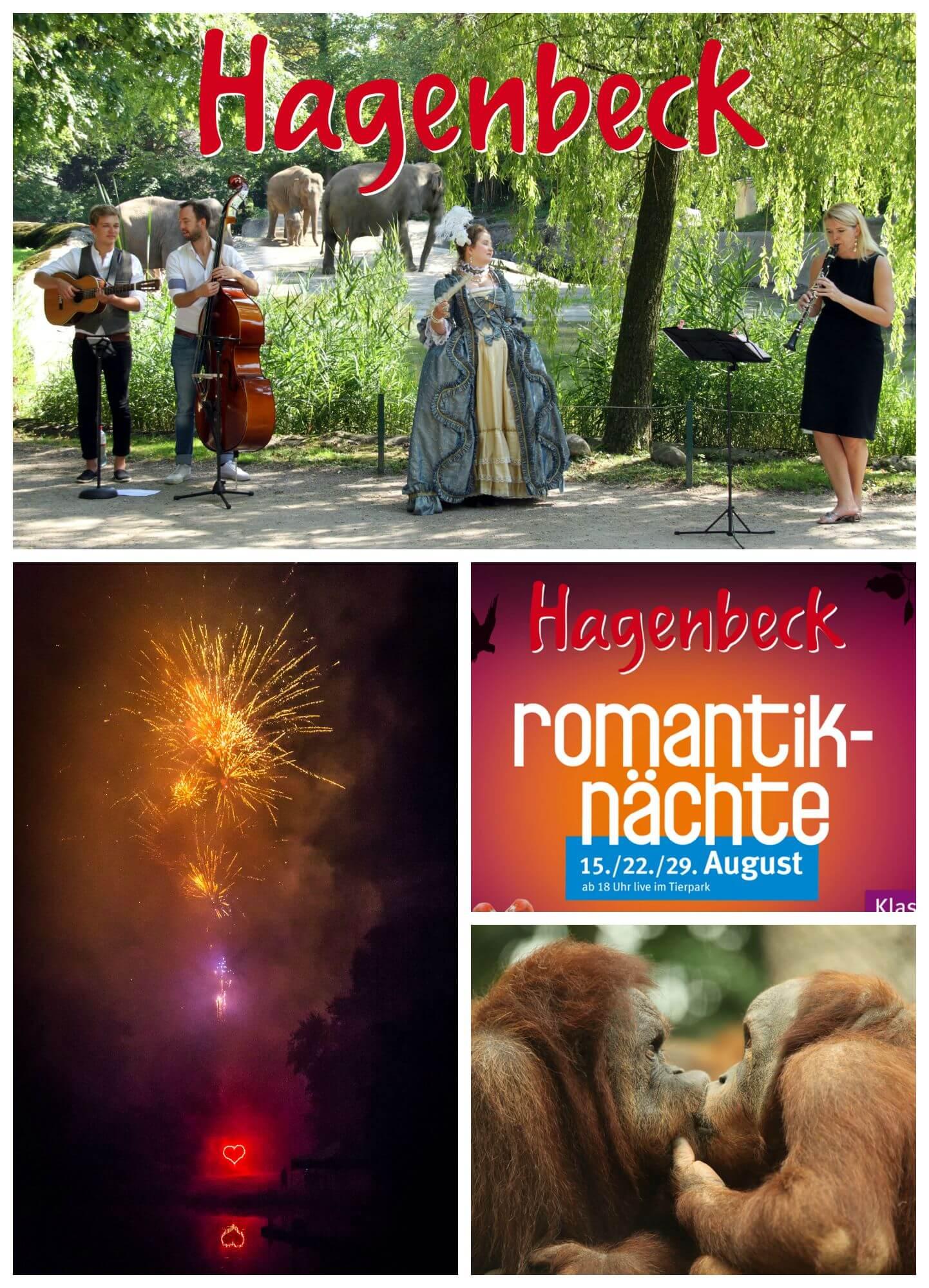Nächte hagenbeck romantik Tierpark in