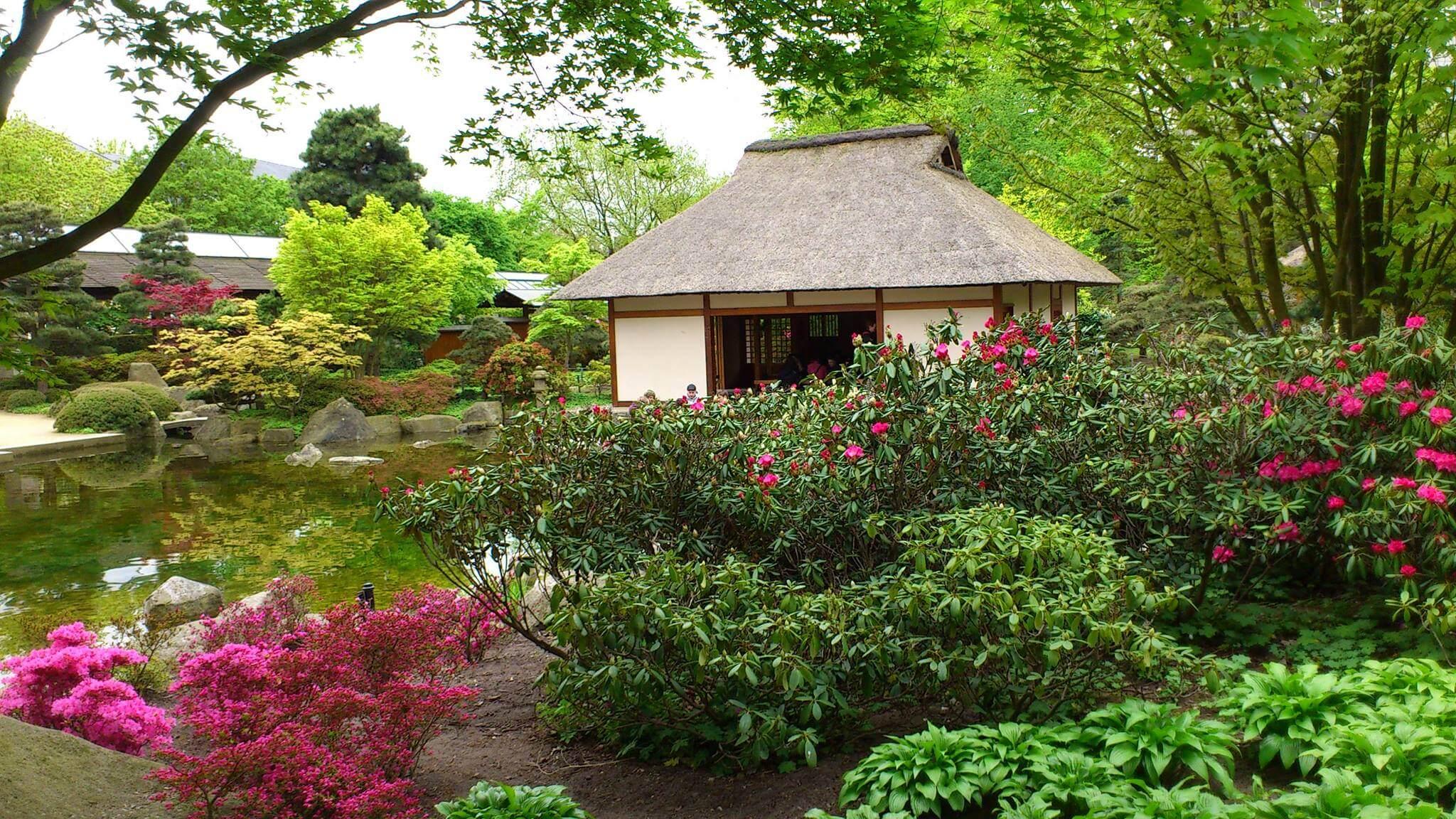 Im Teehaus Im Japanischen Garten Bekommst Einen Einblick In Die Zubereitung  Des Matcha Tees!