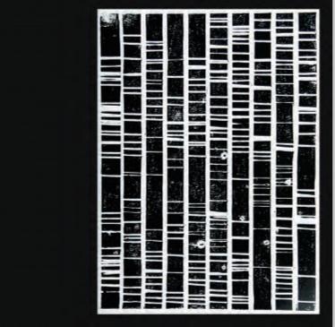 """Die Gruppenausstellung """"werDEN[N]"""" widmet sich menschlichen Identitäten!"""