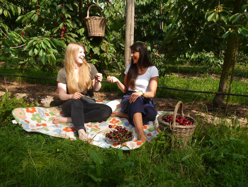 Der Altländer Kirschmarkt hält ein kirschig-süßes Programm für dich bereit!