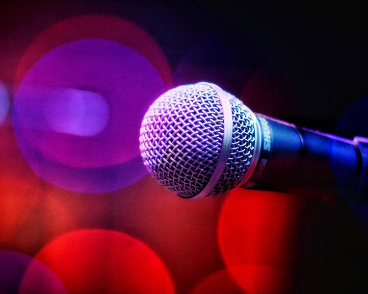 Goldgrölchen und Rhythmusrülpser bereitet dir einen unvergesslichen Karaoke-Abend.