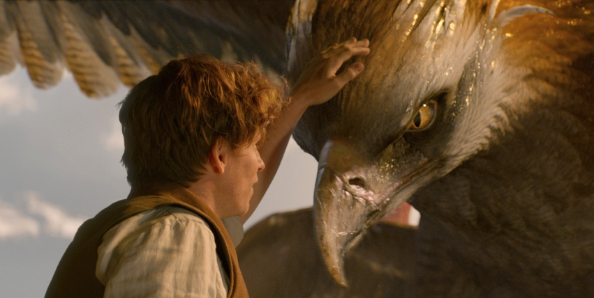 """Magisches Warm-up: sehe dir """"Fantastic Beasts and Where to Find Them"""" im Original an!"""