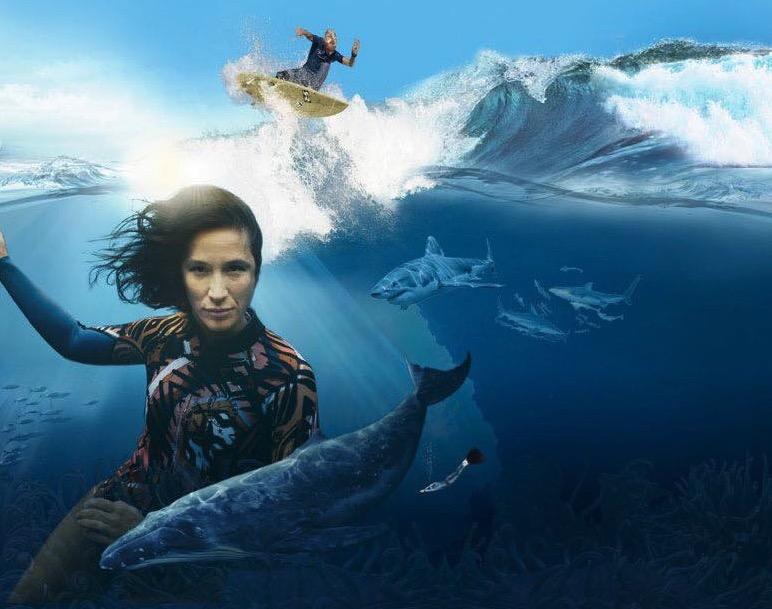 Mit der OCEAN FILM TOUR geht es zurück ans Meer! 🌊