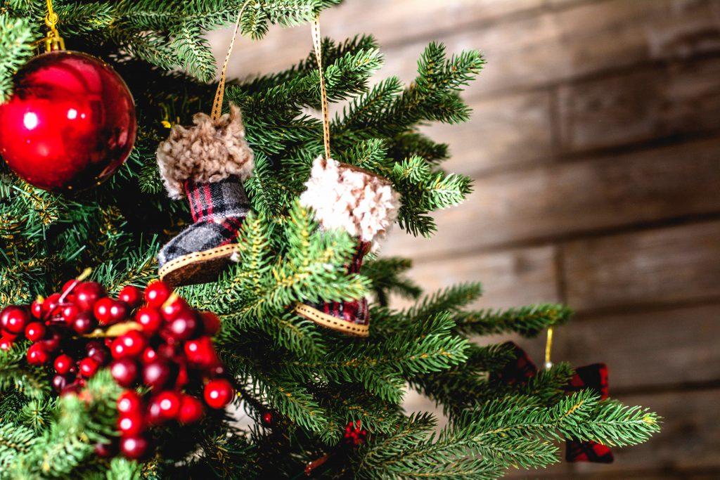 Türchen 9 🎁 Gewinne einen von 5 Weihnachtsbäumen von TimTanne®.