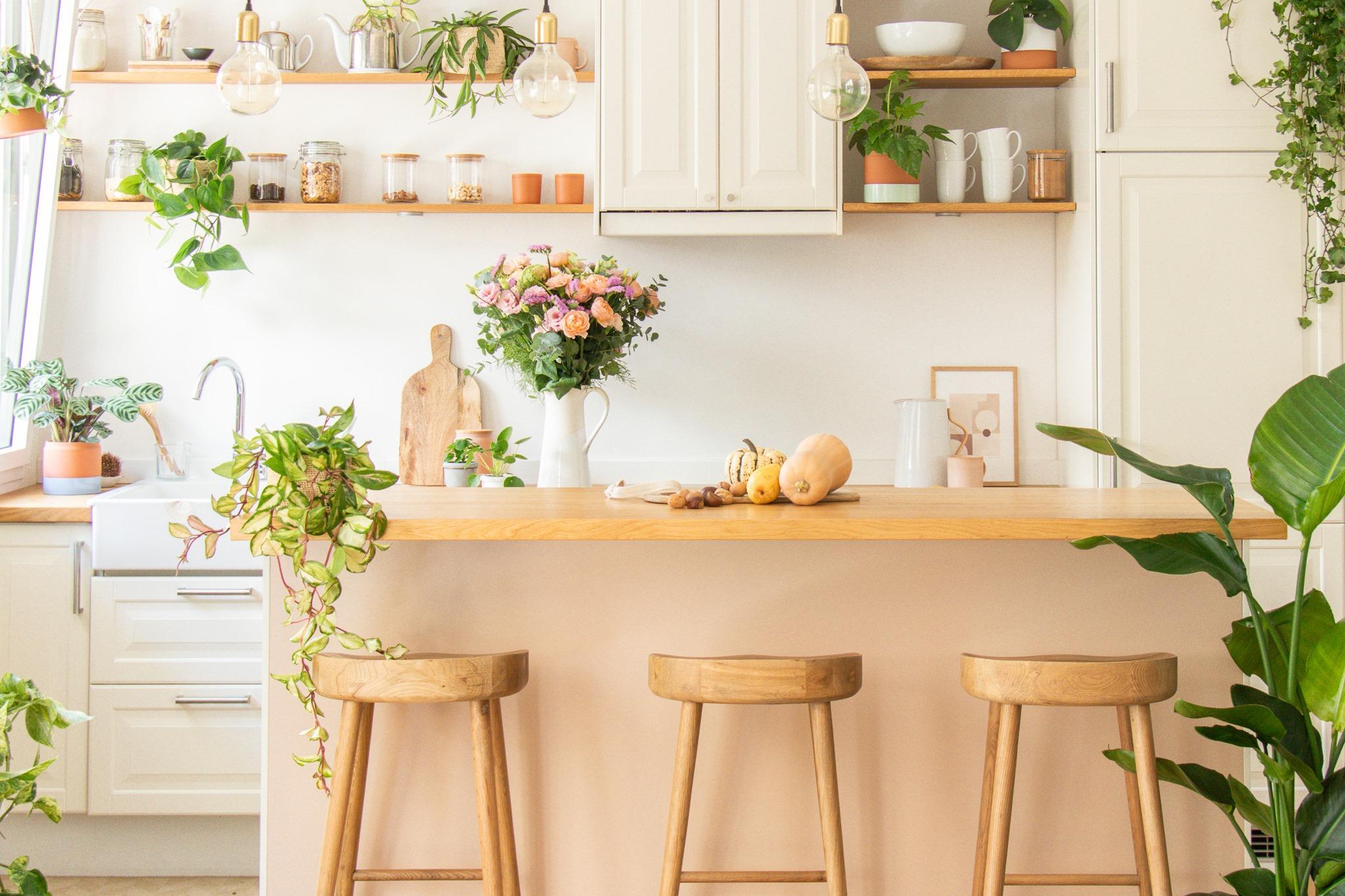 Hol dir Natur in die Wohnung: Bergamotte feiert Eröffnung.