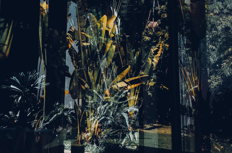 Fotograf Roppel hat Inhotim, Brasiliens spektakulärer Kunstpark, festgehalten.