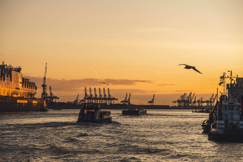 Der digitale Hafengeburtstag bietet ein fettes Programm mit tollen Künstlern.