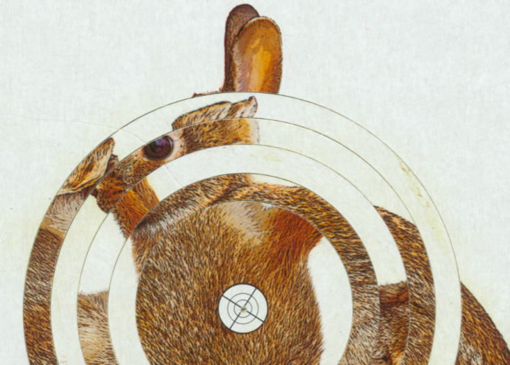 Die xpon-art gallery eröffnet online ihre neue Ausstellung.